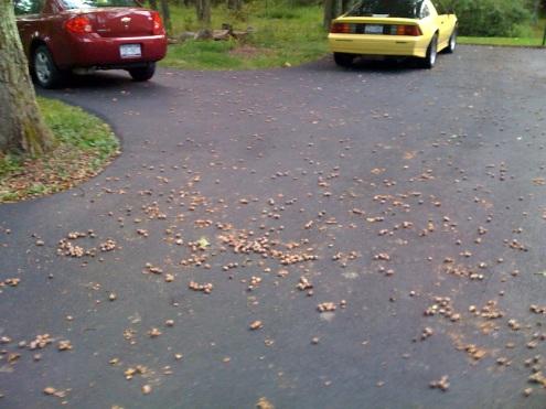 driveway3
